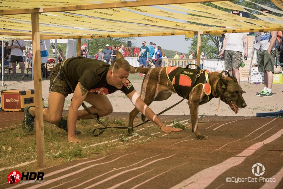 Hard Dog Race akadályfutás   2017