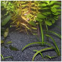 JBL Sansibar Dark Black természetes akvárium talaj (fekete)