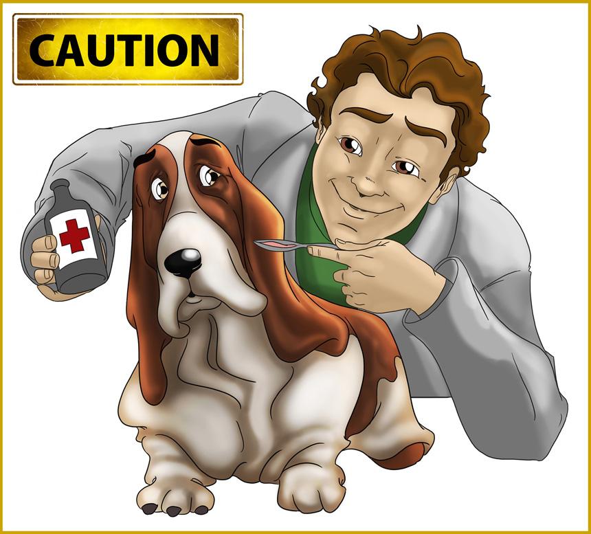 Kutyák és gyógyszerek