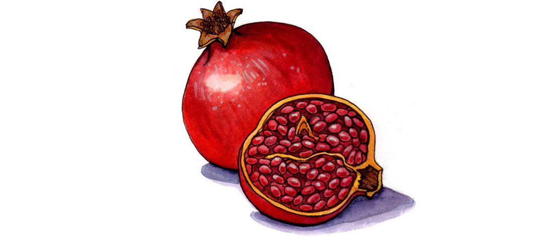 Pomegranate   Gránátalma