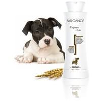 Biogance Protein Plus sampon a lágy és fényes szőrzetért | Kutyáknak és macskáknak