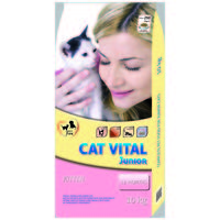 Cat Vital Kitten