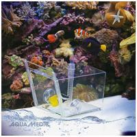 Aqua Medic halcsapda üvegajtóval, rögzítő tapadókorongokkal