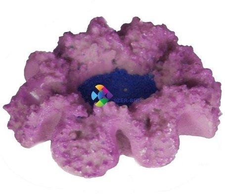 Lila korall levegőporlasztós akvárium dekoráció