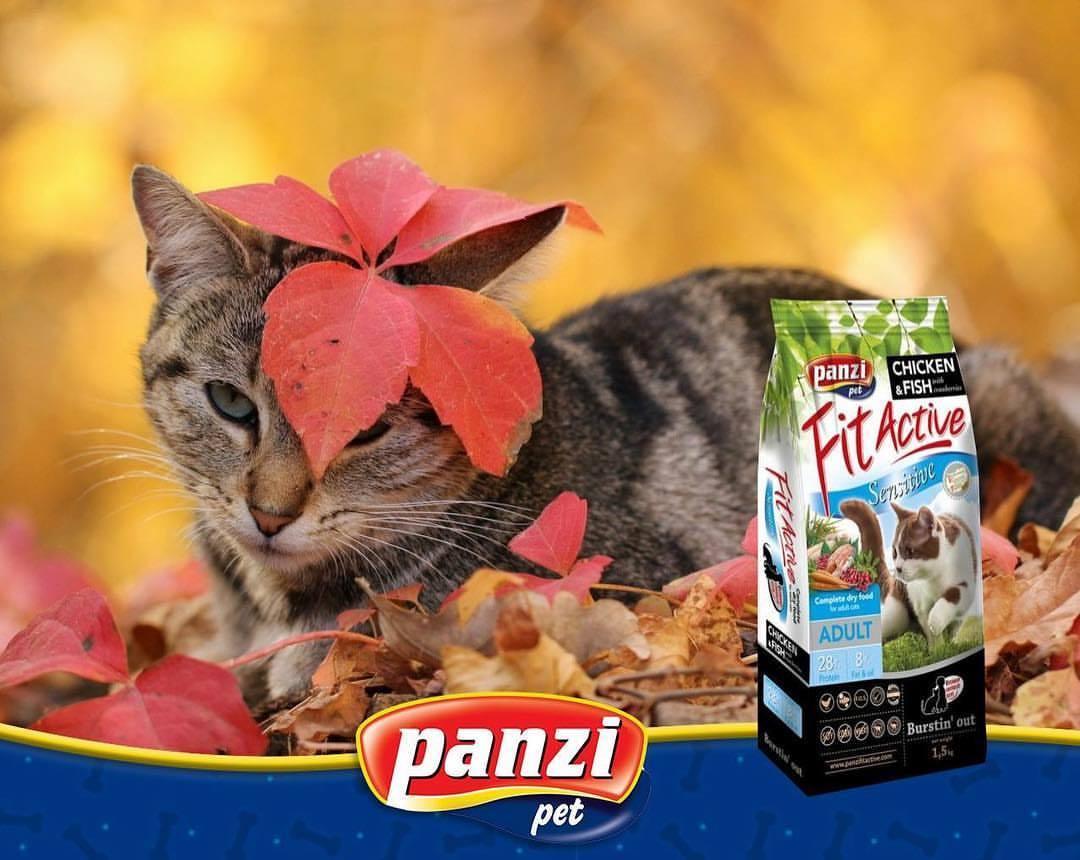 Panzi FitActive Sensitive Adult Cat