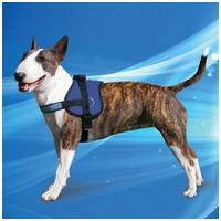 Aqua Coolkeeper speciális hűtőhám kutyáknak a nyári hőség elviseléséhez