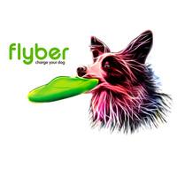 Flyber frizbi kutyáknak