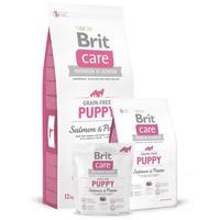 Brit Care Grain-Free Puppy Salmon & Potato gabona- és gluténmentes kölyökkutya táp