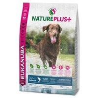 Eukanuba NaturePlus+ Adult Large Salmon | Nagytestű felnőtt kutyáknak | Lazacos szárazeledel