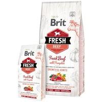 Brit Fresh Beef with Pumpkin Puppy Large Bones & Joints | Friss marhahússal és sütőtökkel nagytestű kutyáknak