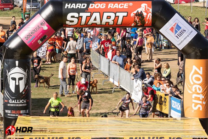 Hard Dog Race Base   Piliscséve   1