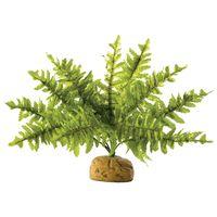 Exo Terra Boston Fern (páfrány) műnövény