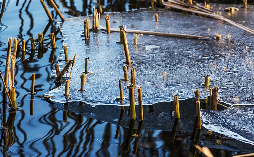 Még részlegesen befagyott vízű kerti tó