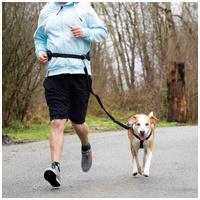 Trixie Dog Activity öv pórázzal közepes és nagytestű kutyáknak