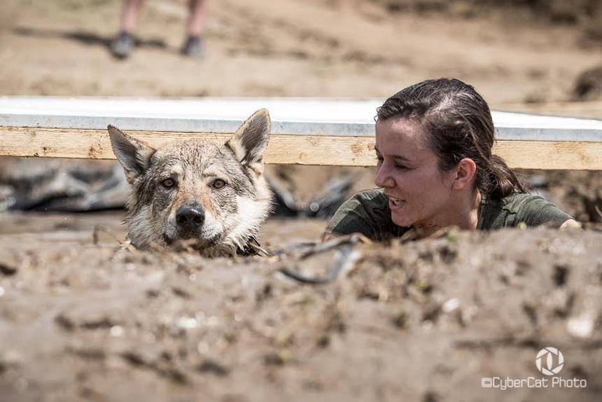 Hard Dog Race   Gazdi es kutya akadalyfutasa
