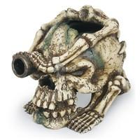 Ágyúszemű William koponya akváriumi dekor
