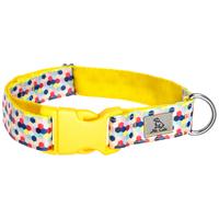 Mr. Colin műanyag csatos kutyanyakörvek látványos mintákkal