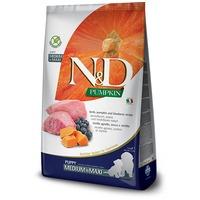 N&D Dog Grain Free Puppy Medium/Maxi sütőtök, bárány & áfonya szuperprémium kutyatáp