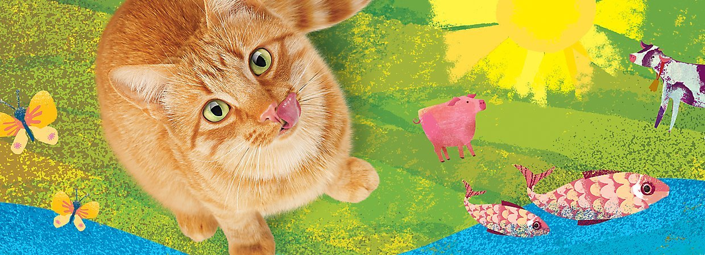 Friskies Cat száraz macskaeledelek