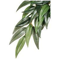 Exo Terra Rucus műnövény