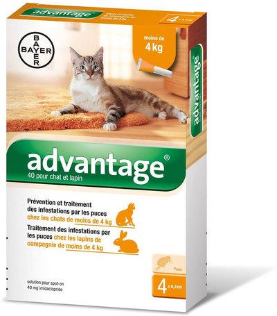 Advantage 40 spot on nyulaknak és macskáknak