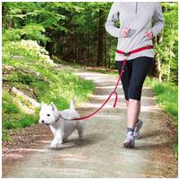 Trixie Dog Activity deréköv pórázzal kis- és közepes testű kutyákhoz