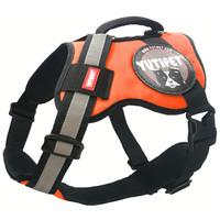 Yutipet RnD párnázott biztonsági kutyahám (Narancssárga)