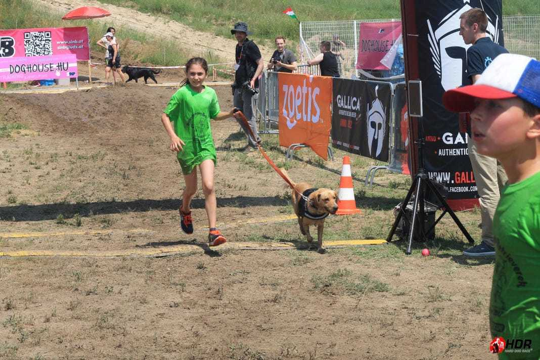 Hard Dog Race befutó   2017