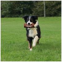Trixie Dog Activity préda utánzat játék kutyának
