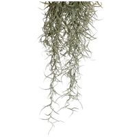 Exo Terra Spanish Moss terráriumi műnövény