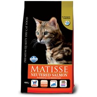 Matisse Salmon Neutered