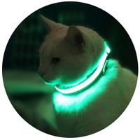 Világító felszerelések macskáknak