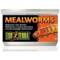 Exo Terra Mealworms – Puhára főzött lisztkukacok hüllőknek