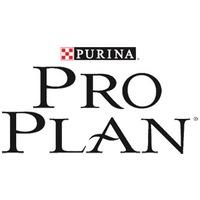 <p>Pro Plan</p>
