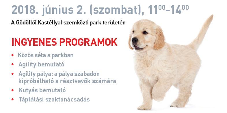 Royal Canin DogWalk Gödöllőn