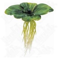 Exo Terra lebegő műnövény – Vízi saláta