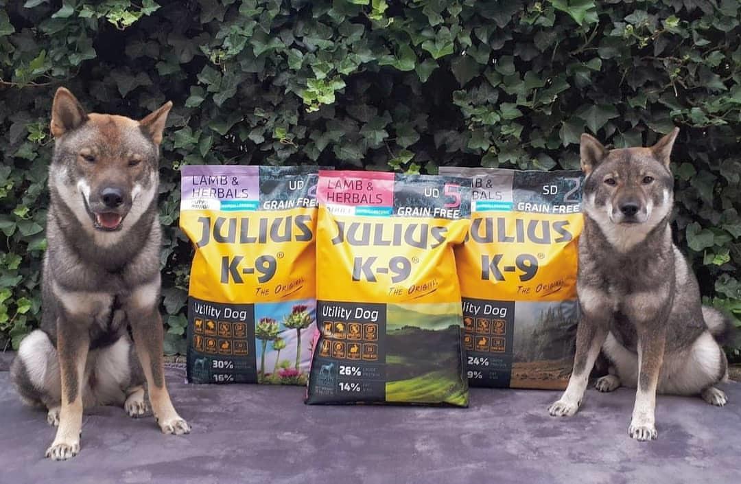 Julius-K9 Lamb & Herbals