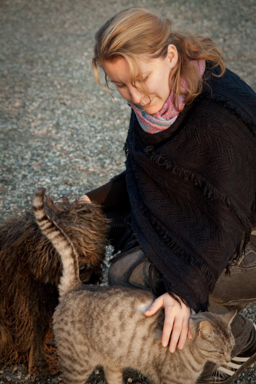 Tollas Zsófia - Egy barátom kutyájával és macskájával