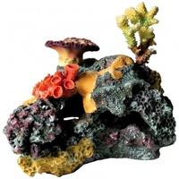 Trixie korallzátony