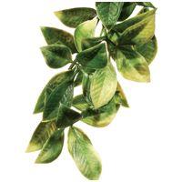Exo Terra Mandarin műnövény